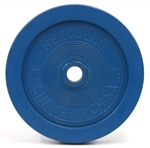 DHS 20 kg Training Bumpers